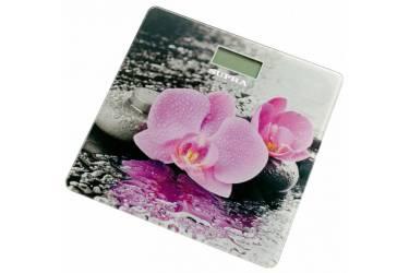 Весы напольные электронные Supra BSS-2001 макс.180кг розовый/рисунок