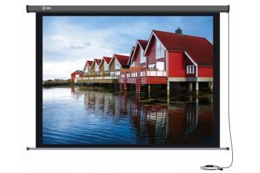 Экран Cactus 124.5x221см Professional Motoscreen CS-PSPM-124x221 16:9 настенно-потолочный рулонный (моторизованный привод)
