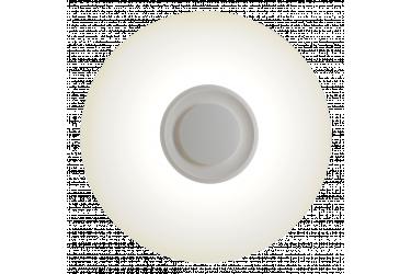 Светодиодный потолочный светильник (LED) _Smartbuy24W Bluetooth 4K (SBL-Btooth-24-W-4K)