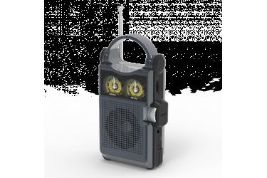 Радиоприемник Ritmix RPR-333 CARBON