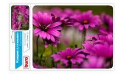 Коврик для мыши Buro BU-M20045 рисунок/цветы