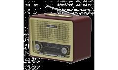Радиоприемник Ritmix RPR-088 золото