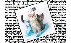 Весы напольные электронные Centek CT-2426 Kitten 180кг размер 26х26см